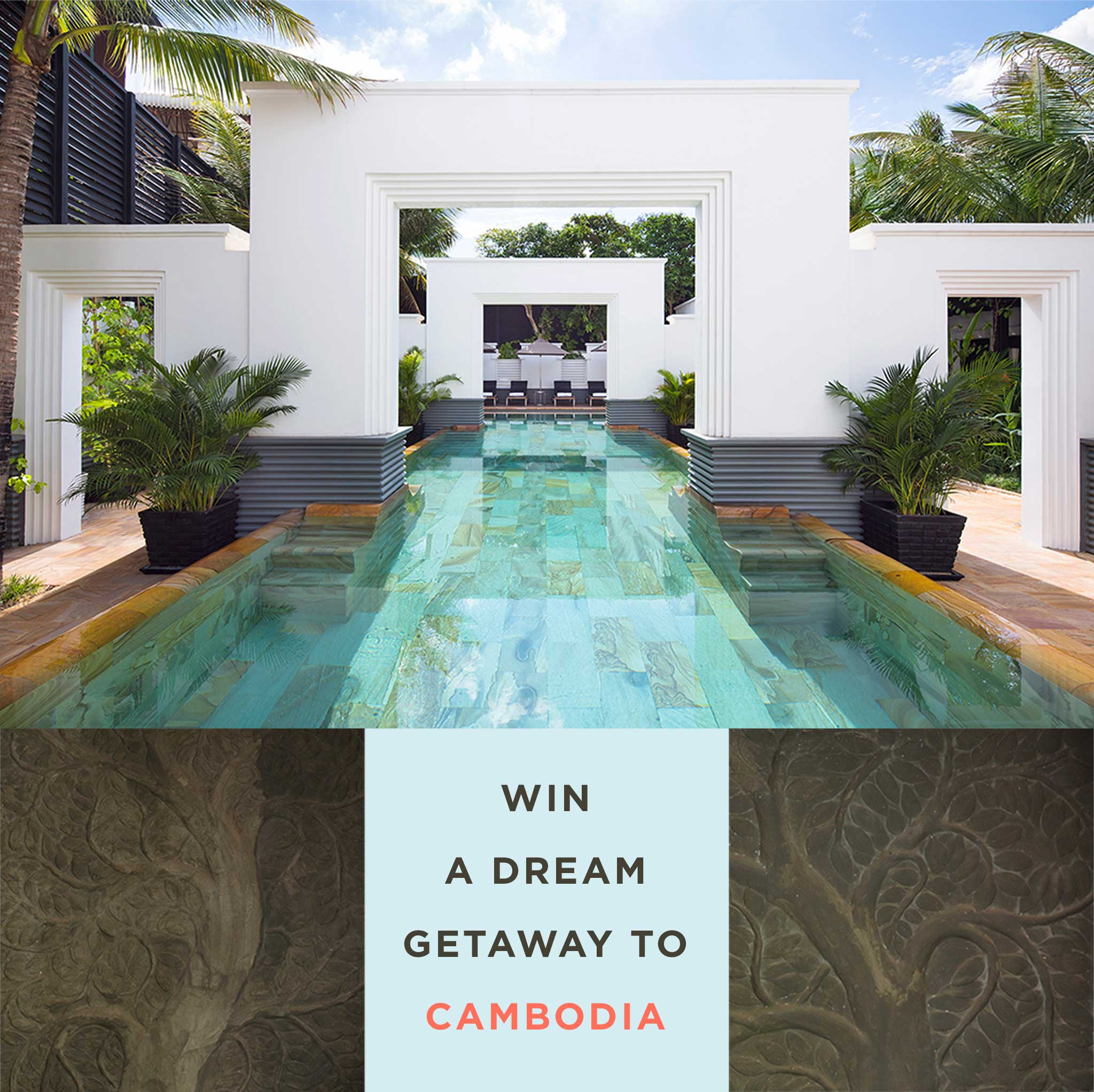 Kiwi Collection – Cambodia Trip Giveaway